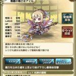 戦槍の戦乙女アイル:最強の矛の異名を持つ戦乙女